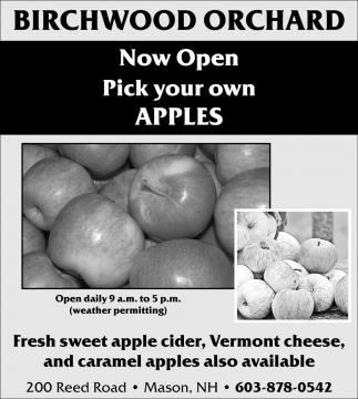 Noe Open Pick Your Own Apples