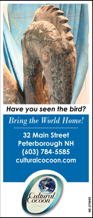 Have You Seen The Bird?