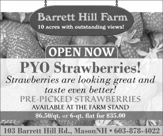 Open Now PYO Strawberries!