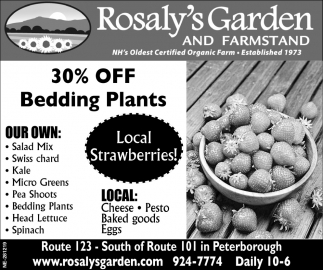 30% Off Bedding Plants