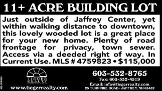 11+ Acre Building Lot