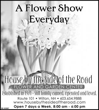 A Flower Show Everyday